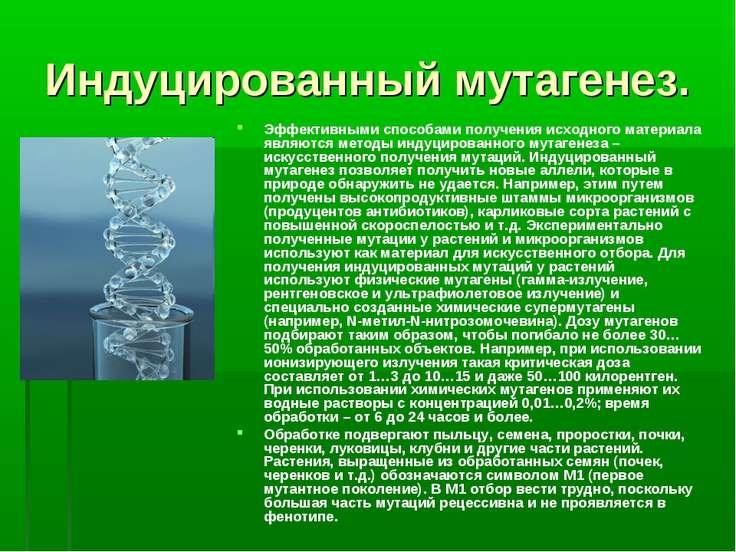 Индуцированный мутагенез. Эффективными способами получения исходного материал...
