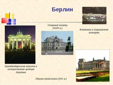 Берлин Бранденбургские ворота в историческом центре Берлина Фламинго в Берлин...