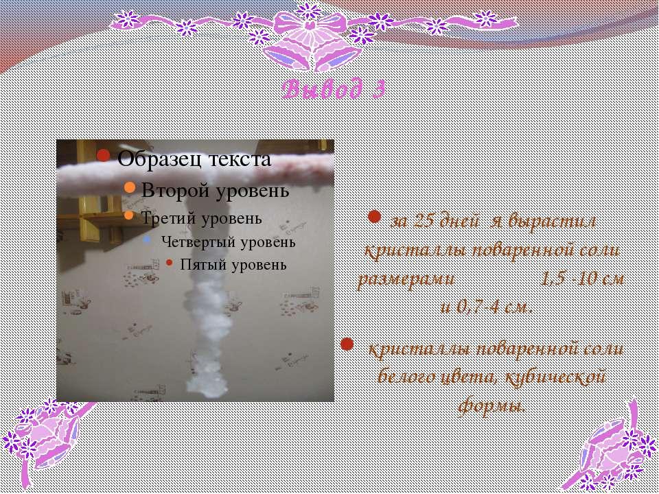 Вывод 3 за 25 дней я вырастил кристаллы поваренной соли размерами 1,5 -10 см ...