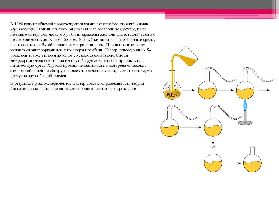 В 1860 году проблемой происхождения жизни занялся французский химик Луи Пасте...