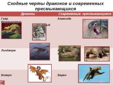 Выводы: Драконы и древние динозавры имеют внешнее сходство (слайд № 6) Дракон...