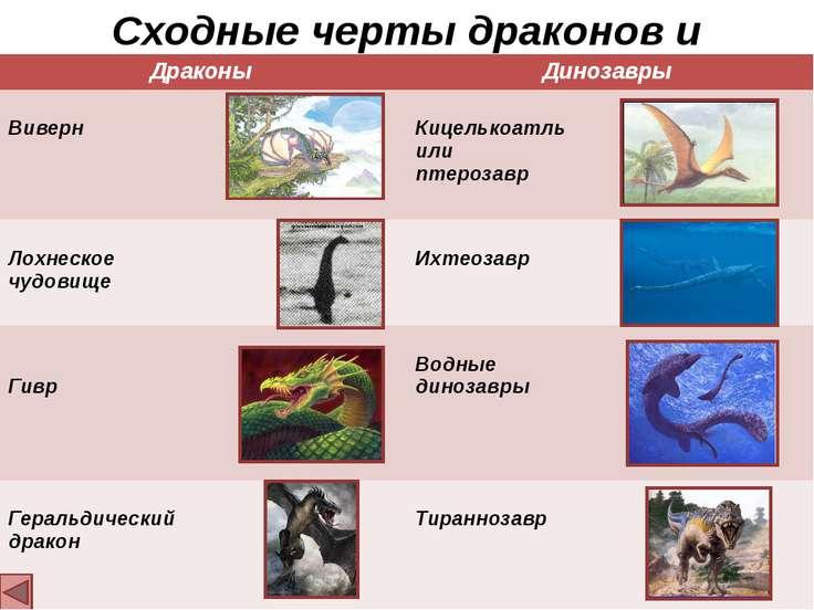 Сходные черты драконов и динозавров Драконы Динозавры Виверн Кицелькоатль или...