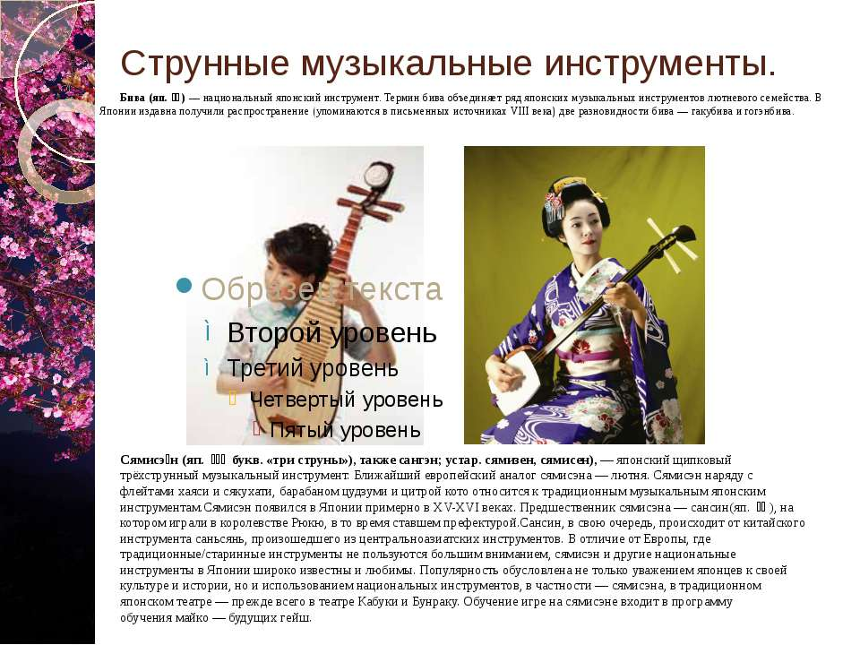 Струнные музыкальные инструменты. Бива (яп. 琵琶) — национальный японский инс...