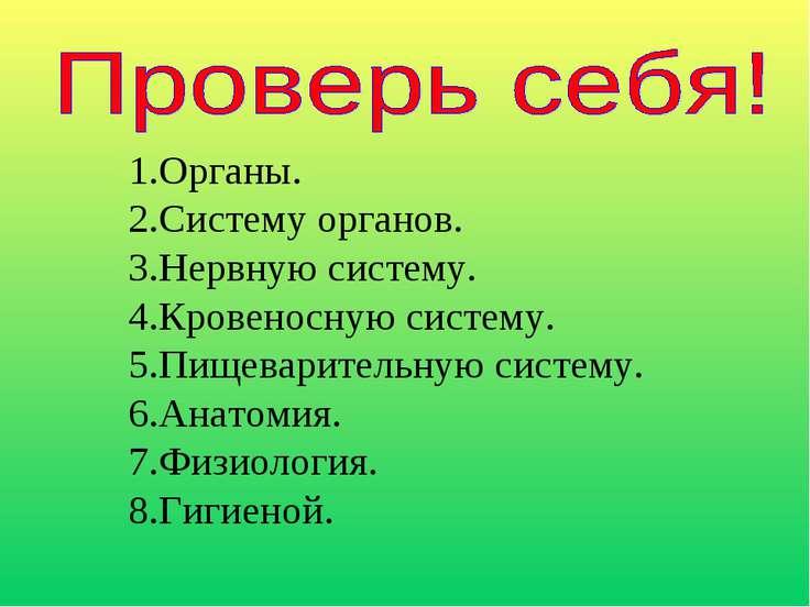 Органы. Систему органов. Нервную систему. Кровеносную систему. Пищеварительну...