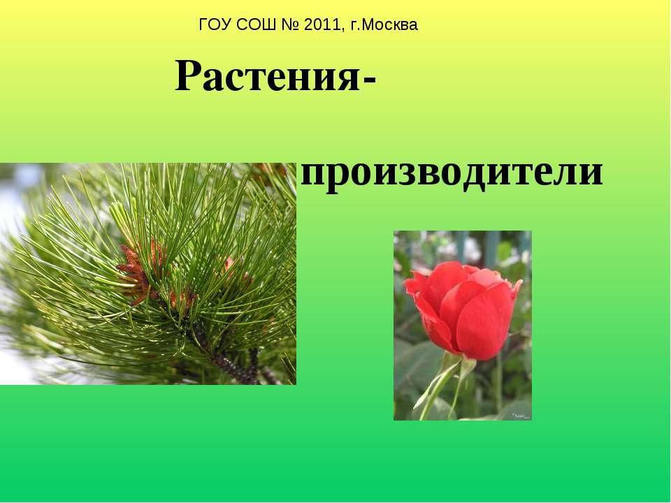 Растения- производители ГОУ СОШ № 2011, г.Москва