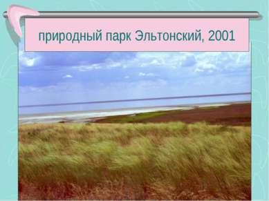 природный парк Эльтонский, 2001