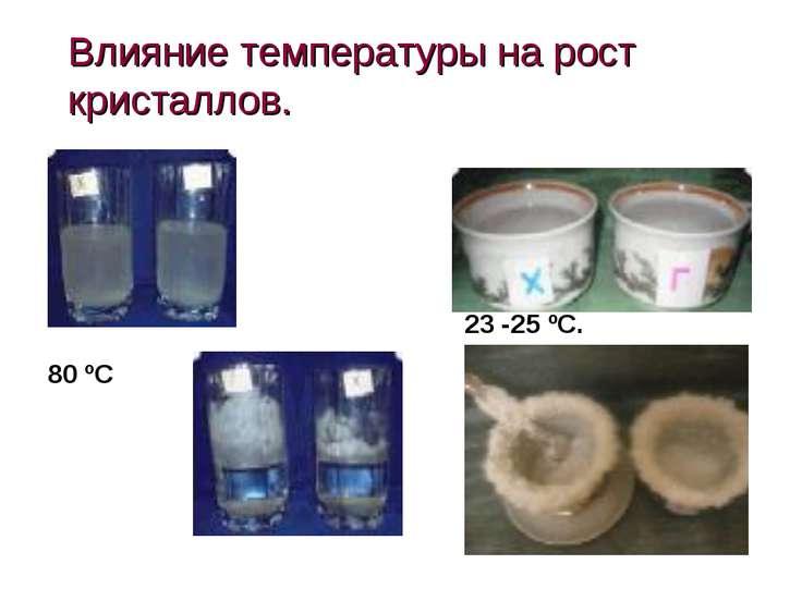 Влияние температуры на рост кристаллов. 80 ºС 23 -25 ºС.