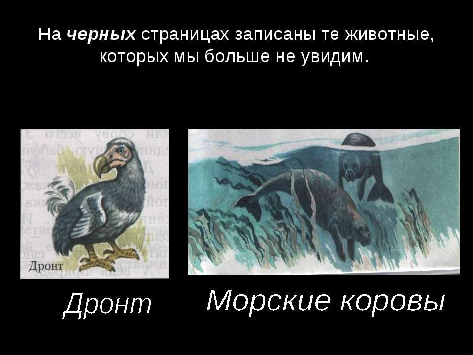 На черных страницах записаны те животные, которых мы больше не увидим.