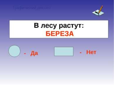 Графический диктант - Да - Нет В лесу растут: БЕРЕЗА