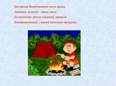 Бесценна Мордовского леса краса, Зеленое золото - наши леса. Богатство лесов ...