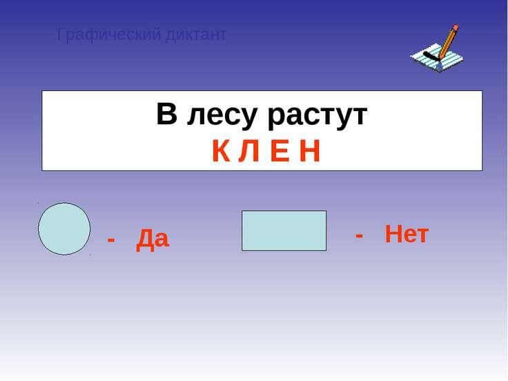 Графический диктант - Да - Нет В лесу растут К Л Е Н