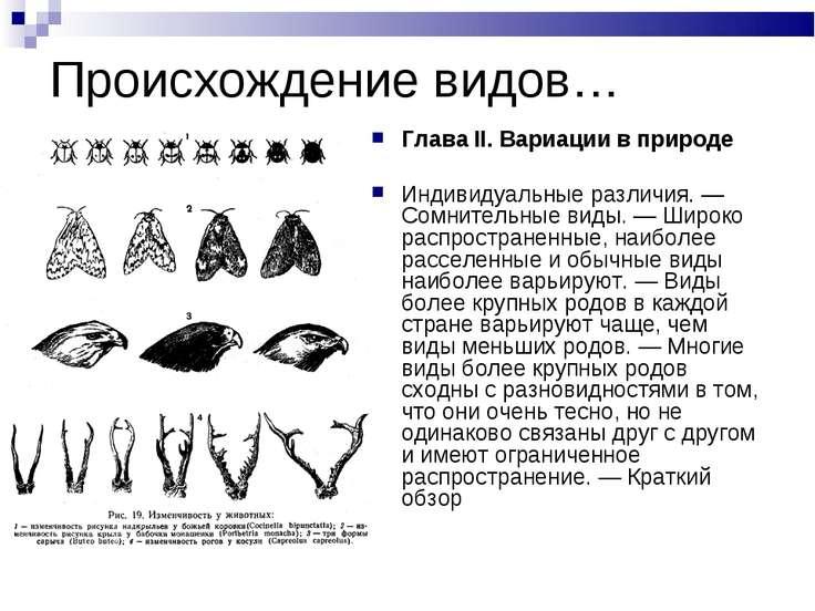 Происхождение видов… Глава II. Вариации в природе Индивидуальные различия. — ...