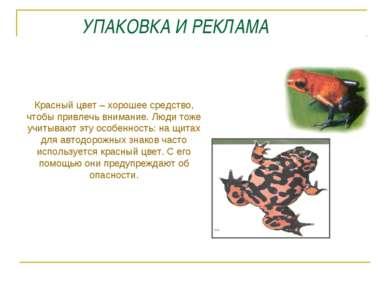 УПАКОВКА И РЕКЛАМА Красный цвет – хорошее средство, чтобы привлечь внимание. ...
