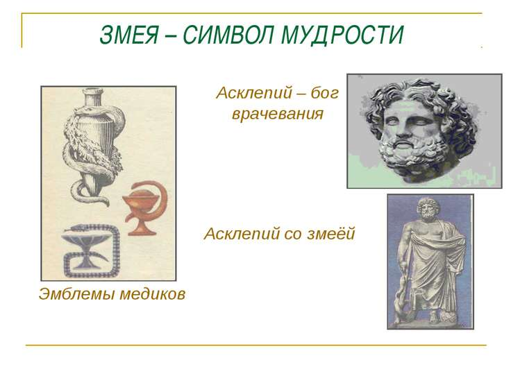 ЗМЕЯ – СИМВОЛ МУДРОСТИ Асклепий – бог врачевания Асклепий со змеёй Эмблемы ме...