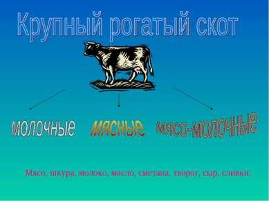 Мясо, шкура, молоко, масло, сметана, творог, сыр, сливки.