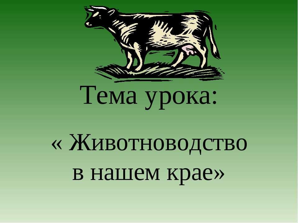 Тема урока: « Животноводство в нашем крае»