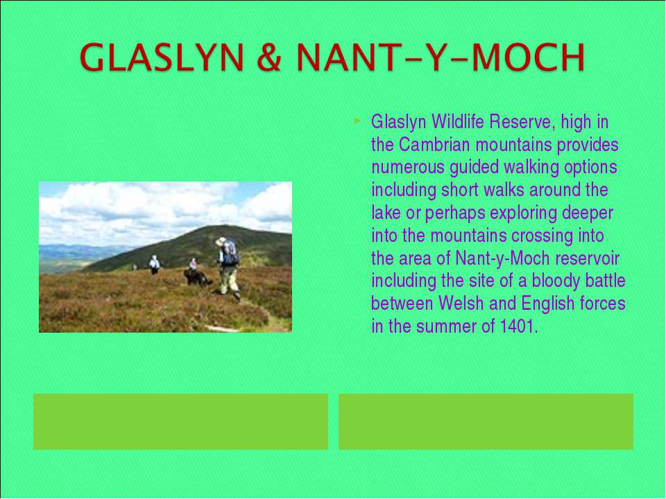 Glaslyn Wildlife Reserve, high in the Cambrian mountains provides numerous gu...