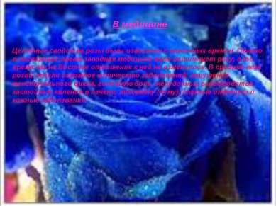 В медицине Целебные свойства розы были известны с античных времен. Однако в н...