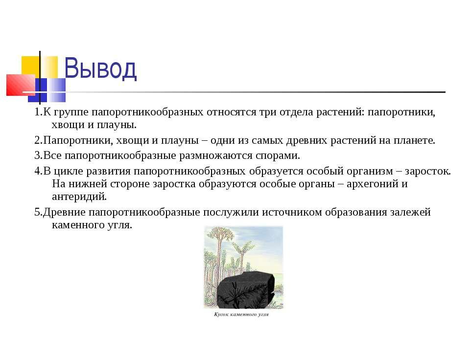 Вывод 1.К группе папоротникообразных относятся три отдела растений: папоротни...