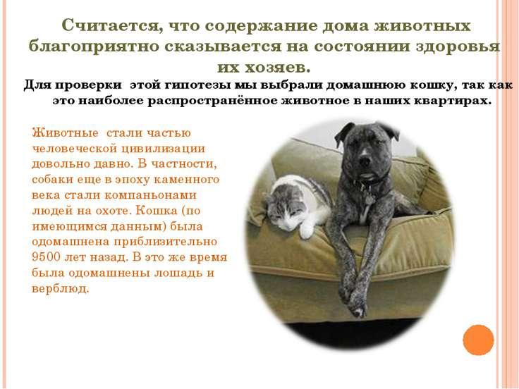 Считается, что содержание дома животных благоприятно сказывается на состоянии...