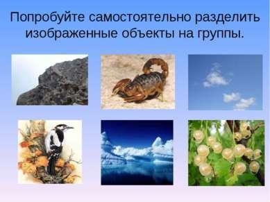 Попробуйте самостоятельно разделить изображенные объекты на группы.