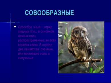 СОВООБРАЗНЫЕ Совообра зные— отряд хищных птиц, в основном ночных птиц, распро...