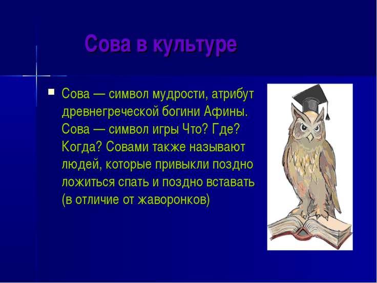 Сова в культуре Сова — символ мудрости, атрибут древнегреческой богини Афины....