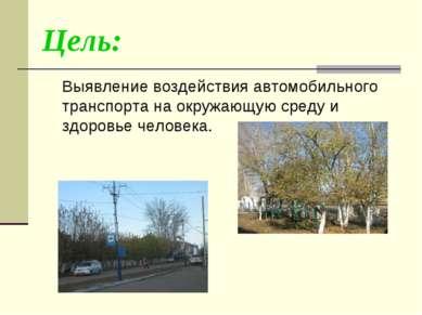 Цель: Выявление воздействия автомобильного транспорта на окружающую среду и з...