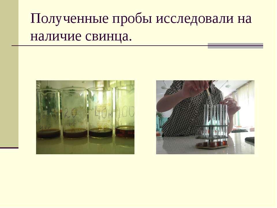 Полученные пробы исследовали на наличие свинца.