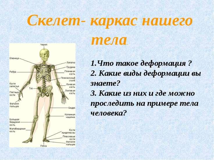 Скелет- каркас нашего тела. 1.Что такое деформация ? 2. Какие виды деформации...
