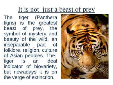 It is not just a beast of prey The tiger (Panthera tigris) is the greatest be...