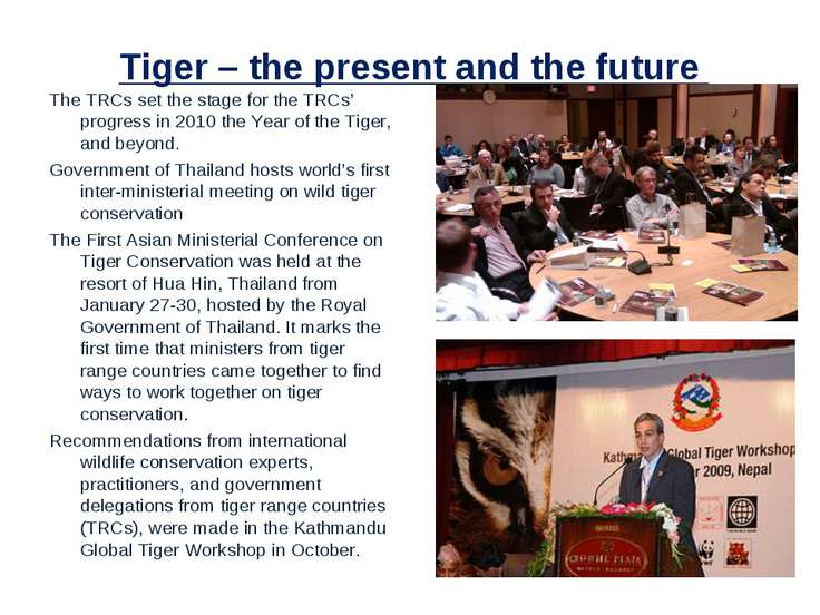 Tiger – the present and the future The TRCs set the stage for the TRCs' progr...