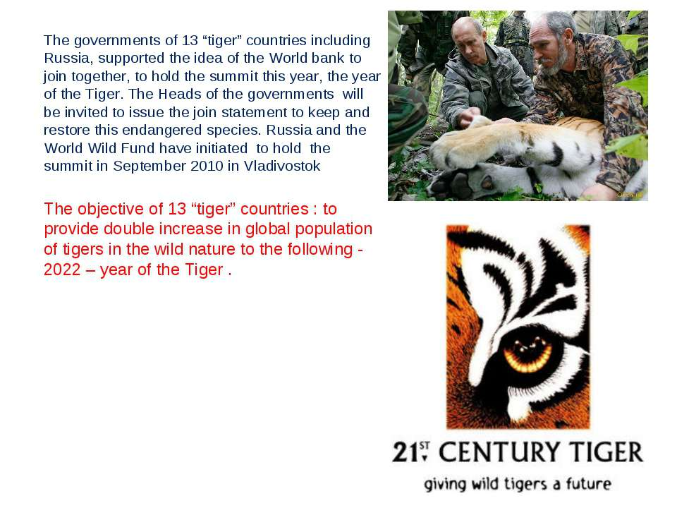 "The governments of 13 ""tiger"" countries including Russia, supported the idea ..."