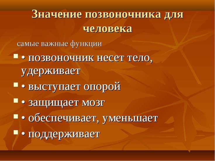 Значение позвоночника для человека самые важные функции • позвоночник несет т...