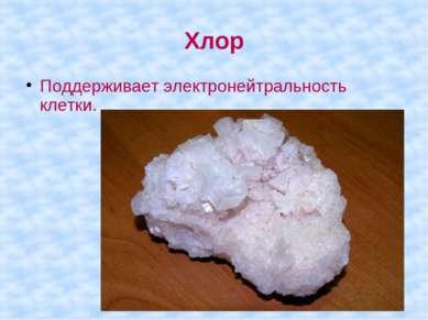 Хлор Поддерживает электронейтральность клетки.