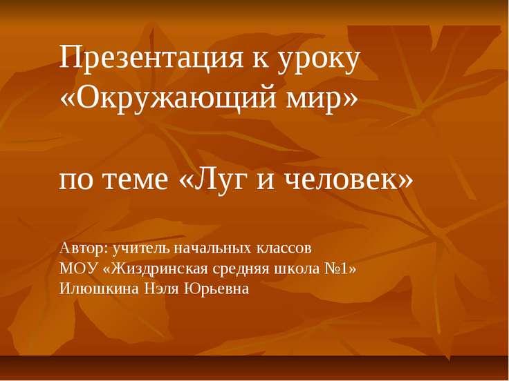 Презентация к уроку «Окружающий мир» по теме «Луг и человек» Автор: учитель н...