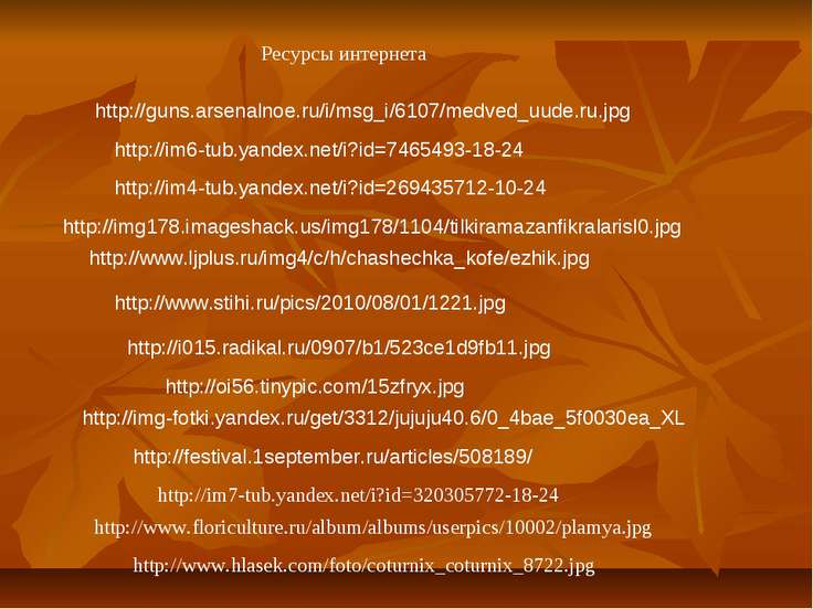 http://guns.arsenalnoe.ru/i/msg_i/6107/medved_uude.ru.jpg http://im6-tub.yand...