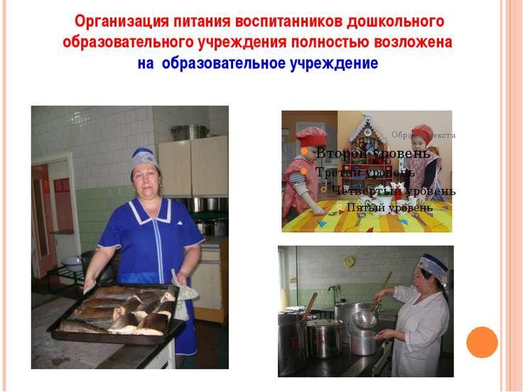 Организация питания воспитанников дошкольного образовательного учреждения пол...