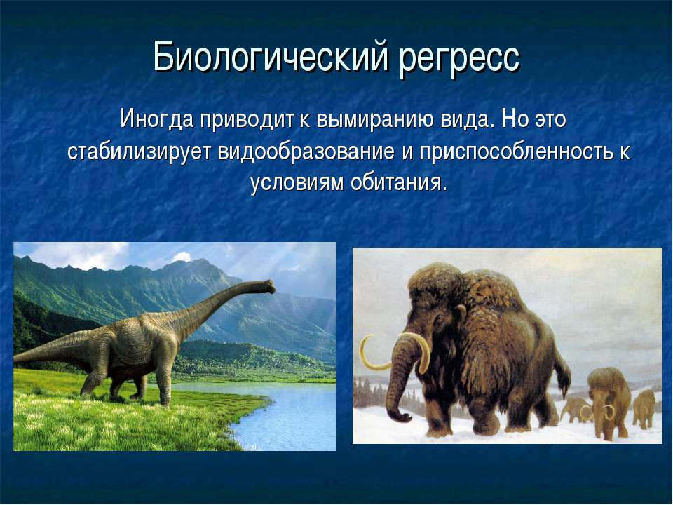 Биологический регресс Иногда приводит к вымиранию вида. Но это стабилизирует ...