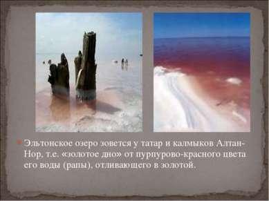 Эльтонское озеро зовется у татар и калмыков Алтан-Нор, т.е. «золотое дно» от ...