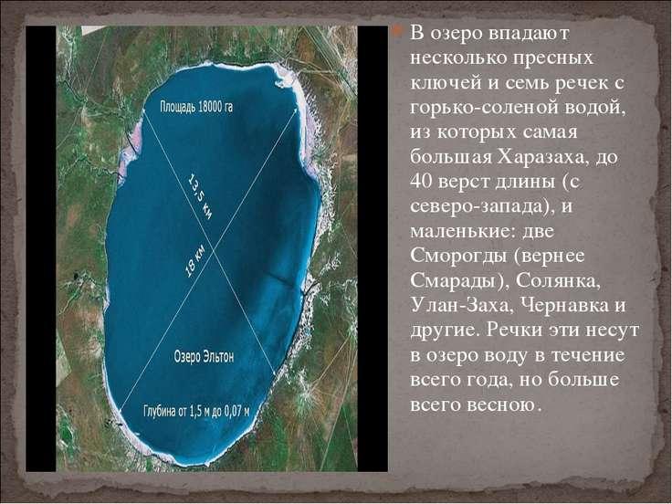 В озеро впадают несколько пресных ключей и семь речек с горько-соленой водой,...