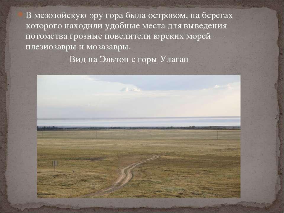 В мезозойскую эру гора была островом, на берегах которого находили удобные ме...