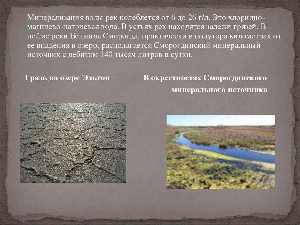 Минерализация воды рек колеблется от 6 до 26 г/л. Это хлоридно-магниево-натри...