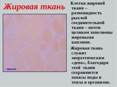 Жировая ткань Клетки жировой ткани – разновидность рыхлой соединительной ткан...