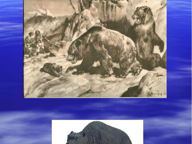 пещерные медведи