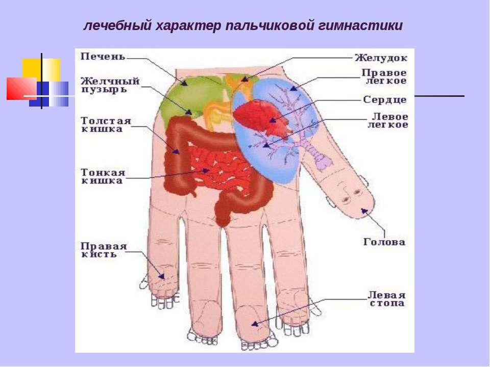 лечебный характер пальчиковой гимнастики