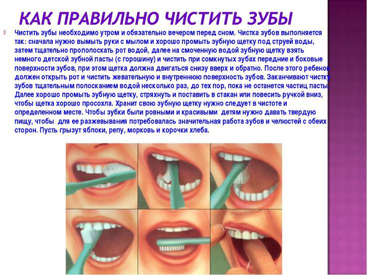 Чистить зубы необходимо утром и обязательно вечером перед сном. Чистка зубов ...