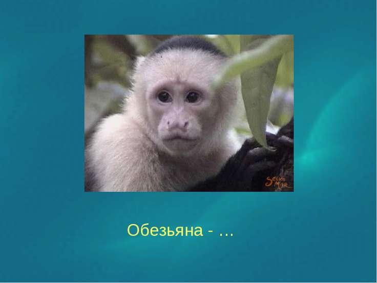 Обезьяна - …