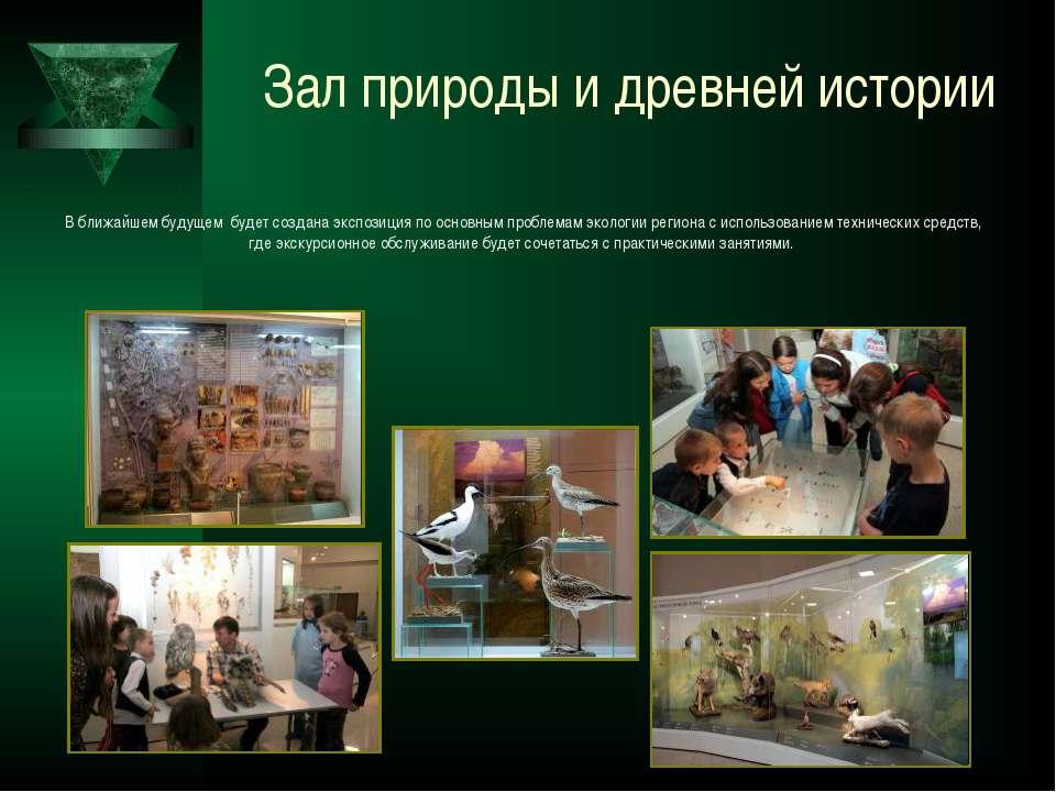 Зал природы и древней истории В ближайшем будущем будет создана экспозиция по...