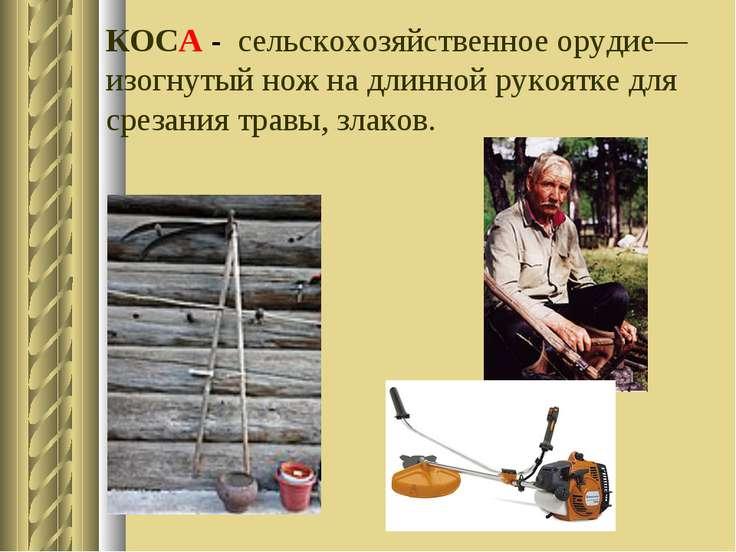 КОСА - сельскохозяйственное орудие—изогнутый нож на длинной рукоятке для срез...